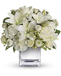 Photo of Peace and Joy by Teleflora - T408-2