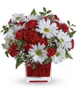 Photo of Red Miniarure Carnations and White Daisies - TEV27-2