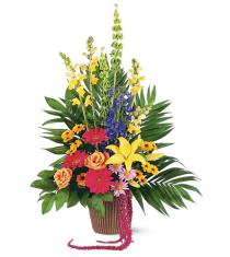 Photo of Celebration of Life Arrangement - TF203-9