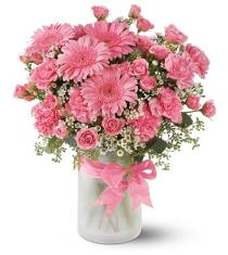 Photo of Pink Galore - TFWEB155