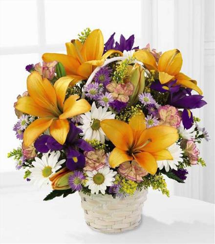 Photo of BF7211/C12-3434d (More flowers)