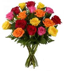 Photo of Long Stem Mixed Roses - F492