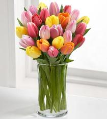 Photo of Rush of Color Assorted Tulips Vased - FC70