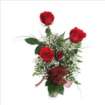 Photo of Roses in Bud Vase - BF9017