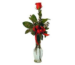 Photo of Single Rose Vase Color Choice  - BF1152