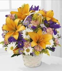 Photo of Natural Wonders Spring Flower Basket - C12-3434