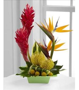Photo of The FTD Exotica Arrangement - C21-4873
