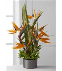 Photo of The FTD Tropical Bright Arrangement - C21-4874