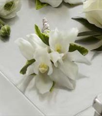 Photo of The FTD White Mini Cymbidium Boutonniere - D12-4628
