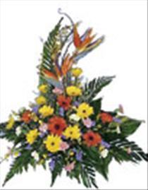 Photo of Seasonal Arrangement - IC-3001