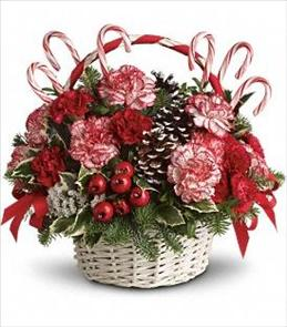 Photo of Candy Cane Christmas Teleflora T118-3 - T118-3