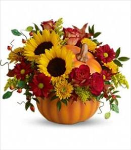 Photo of Pretty Pumpkin Fall Bouquet  - T11H110