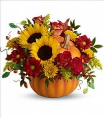 Photo of Teleflora's Pretty Pumpkin Fall Bouquet - T11H110