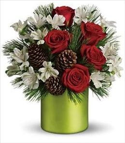 Photo of Teleflora's Christmas Cheer Bouquet - T124-1