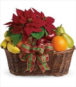 Photo of Fruit and Poinsettia Basket - T135-1