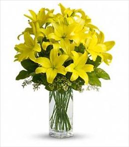 Photo of BF6110/T140-2DX (7 to 9 stems)