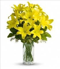 Photo of Teleflora's Lily Sunshine - T140-2