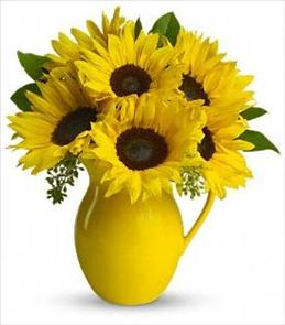 Photo of Teleflora's Sunny Day Pitcher of Sunflowers - T153-1