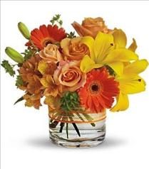 Photo of Sunny Siesta in Vase - T157-3