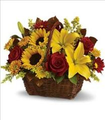 Photo of Golden Days Basket by Teleflora - T174-2