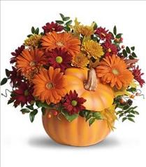 Photo of Teleflora's Country Pumpkin - T175-1
