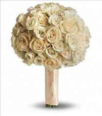 Photo of Blush Rose Bouquet - T186-1