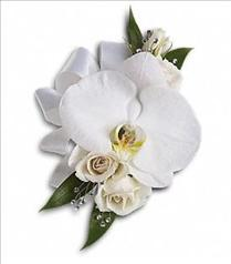 Photo of White Orchid and Rose Corsage - T196-5