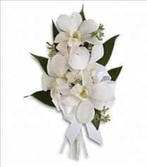 Photo of Graceful Orchids Corsage - T196-6