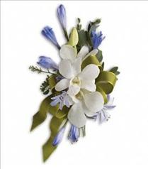 Photo of Blue and White Elegance Corsage - T201-4