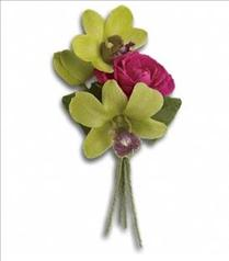 Photo of Orchid Celebration Boutonniere - T202-1
