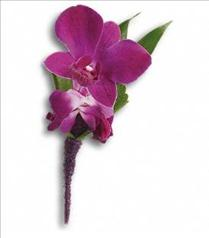 Photo of Perfect Purple Orchid Boutonniere - T202-8