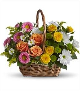 Photo of Sweet Tranquility Flower Basket - T213-2