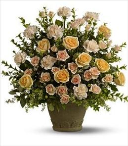 Photo of Teleflora's Rose Remembrance - T221-2