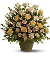 Photo of Rose Remembrance by Teleflora - T221-2