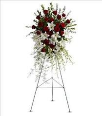 Photo of Lily and Rose Tribute Spray - T226-1