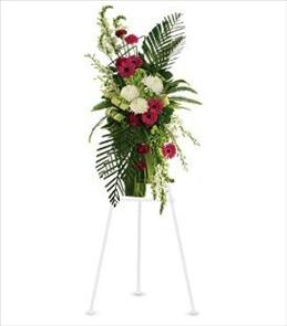 Photo of Gerberas and Palms Spray - T246-3