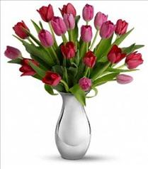 Photo of Sweet Surrender Tulip Bouquet - T402-1