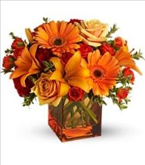 Photo of Teleflora's Sunrise Sunset - T47-1