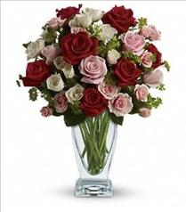 Photo of Cupid's Creation by Teleflora - T6-1