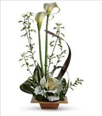 Photo of Teleflora's Grand Gesture - T78-1