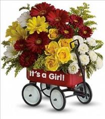 Photo of Baby's Wow Wagon by Teleflora - Girl - T97N400
