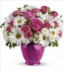 Photo of Teleflora's Pink Daisy Delight - TEV07-1