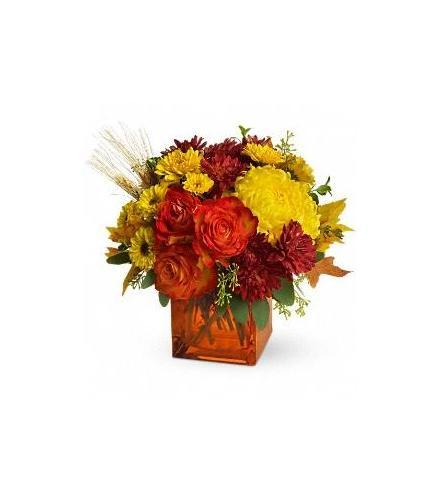 Photo of BF6501/TFL02-1DX (4 Roses plus mums)