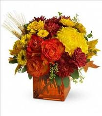 Photo of Teleflora's Autumn Expression - TFL02-1