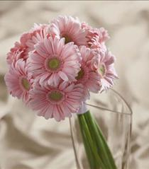 Photo of The FTD Daisy Delight Bouquet - W15-4651