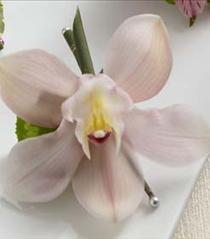 Photo of The FTD Pink Cymbidium Boutonniere - W17-4666