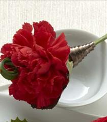 Photo of The FTD Red Carnation Boutonniere - W54-4750