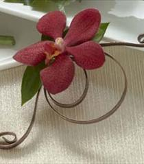 Photo of The FTD Red Mokara Boutonniere - W54-4752