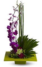 Contemporary Design Flowers