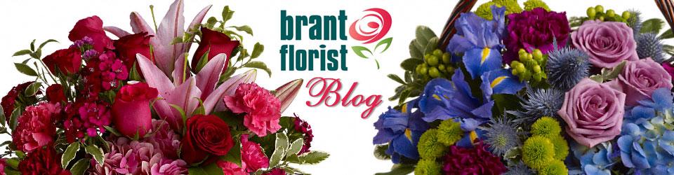 Brant Florist Blog